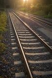 Railroad tracks leading in tunnel Stock Photo