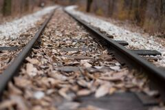 Railroad Tracks With Leaves Stock Images