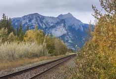 Railroad tracks through Mountain Royalty Free Stock Photography