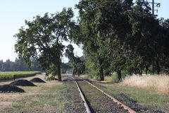 Railroad Tracks. From Napa Valley Stock Photos