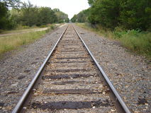 Railroad tracks near the woods. Abandoned railroad tracks near the woods Stock Photography