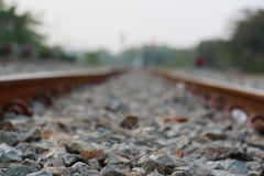 Railroad tracks and railway sleepers. Royalty Free Stock Images