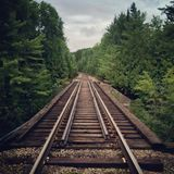 Railroad Tracks Running Through Woods Royalty Free Stock Image