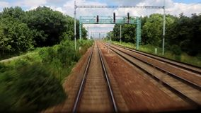 Railroad tracks in summer nature stock video