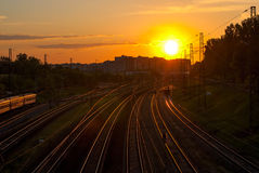 Railroad tracks in the sunlight Royalty Free Stock Image