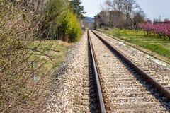 Railroad tracks toward the horizon along blossoming peach trees Stock Photo