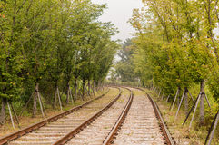 Railroad tracks with ttress on both sides Stock Images