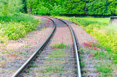 Railroad tracks. View on railroad tracks, track with a colorful plantings Royalty Free Stock Photography