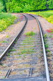 Railroad tracks. View on railroad tracks, track with a colorful plantings Stock Photos