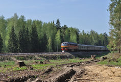 Railroad with train in forest Royalty Free Stock Image