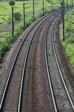 Railroad. Train rails in landscape in a summer day Stock Photography