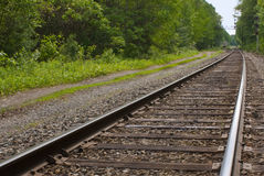 Railroad, train tracks in forest, toward horizon Stock Photos
