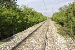 Railroad and tress Royalty Free Stock Photos