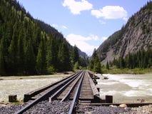 Railroad Trestle across the Animas. A narrow gauge railroad trestle across the Animas River just south of Silverton Colorado Stock Photo