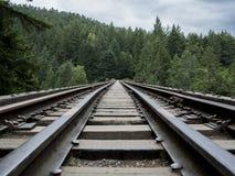 Railroad Trestle Bridge. Going through the forest and mountains Royalty Free Stock Photos