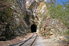 Railroad Tunnel (horizontal) Stock Images