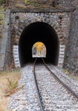 Railroad tunnel Stock Photography