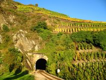 Railroad tunnel in a wine yard. At the Ahr, Germany Stock Photos