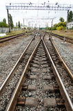 Railroad vertical photo Stock Image