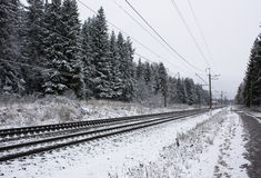 Railroad among winter forest Royalty Free Stock Photography
