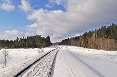 Railroad in winter forest Stock Image