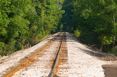 Railroad through the woods Stock Photography