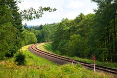 Railroad in the Woods Royalty Free Stock Photos