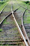 Rails. Train rails close up with some grass Royalty Free Stock Photo