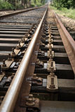 Rails. In country of portugal Stock Photos