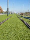 Rails d'un tram Photo libre de droits