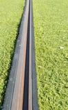 Rails d'un tram Photographie stock