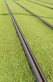 Rails d'un tram Images stock