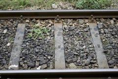 Rails de train Image libre de droits