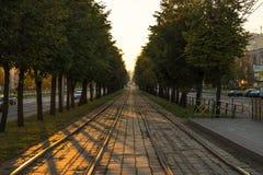Rails de tram de coucher du soleil Photographie stock