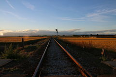 Rails on a field. In late summer. The landscape gives a sense of freedom Royalty Free Stock Photography