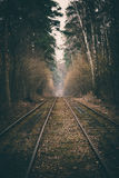Rails in the forest Stock Image