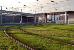 Rails on green grass. Tram rails on green grass Royalty Free Stock Image