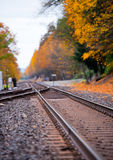 Rails leaving in beautiful yellow autumn. Railroad tracks converging into one of the two metal rails, wooden sleepers and gravel, leaving the horizon surrounded Stock Photography