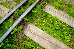 Rails out of order with flowers Royalty Free Stock Image