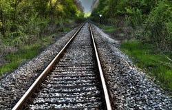 Rails. Rail track extending through the wood Stock Photo