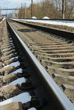 Rails of railway. Go into distance Stock Photo