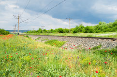 Rails of the railway Royalty Free Stock Image