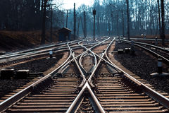 Rails with a selective focus. Rails crossed with a selective focus on sunset Royalty Free Stock Photography