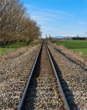 Rails Straight. Straight railway lines on across some of New Zealand richest country side Royalty Free Stock Images