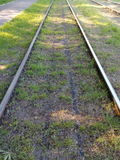 Rails streetcar line on the green grass going back Stock Photography