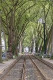 Rails of streetcars in Duesseldorf. Germany Stock Image