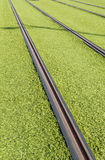 Rails of a tram Stock Images