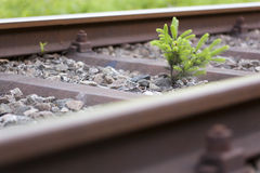 On the railtrack Royalty Free Stock Photo