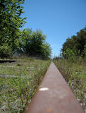 Railtrack. Abandoned Railtrack with green nature byside Stock Photo