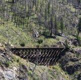 railway моста старый Стоковое Изображение